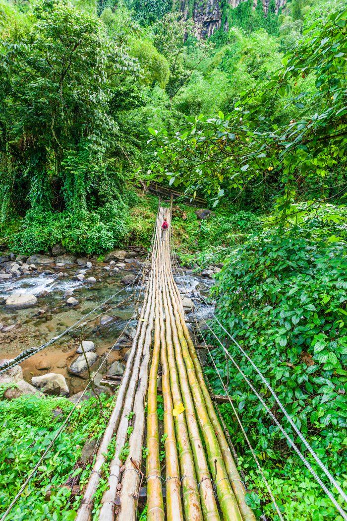 Bamboe brug naar de Dark View Falls op Saint Vincent