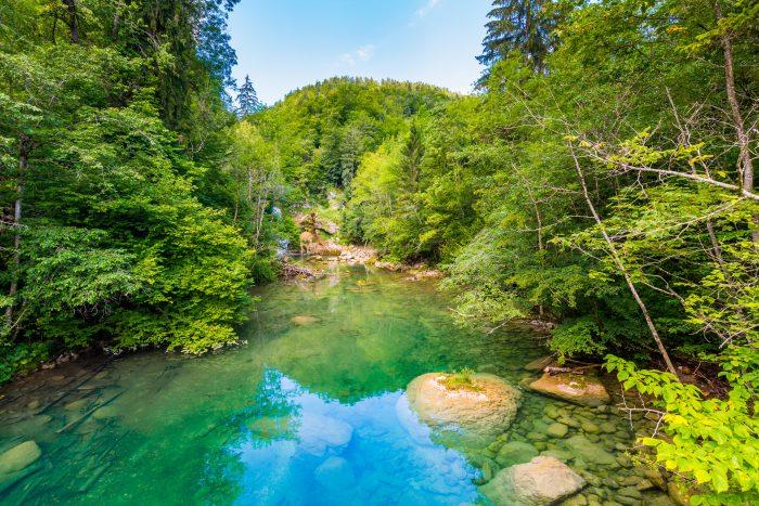 De groene Radovna rivier in de Vintgar kloof
