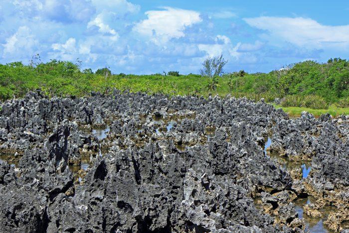 De rotsen van de hel (vlakbij Hell Town) op de Kaaimaneilanden