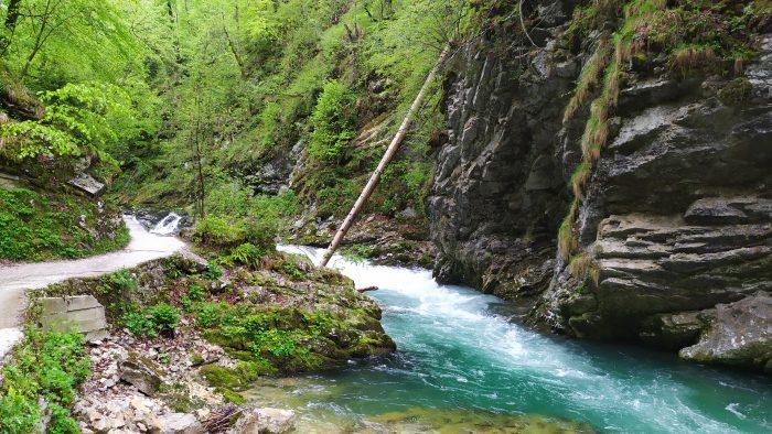 Grindpad en smallere Radovna rivier bij Vintgar kloof