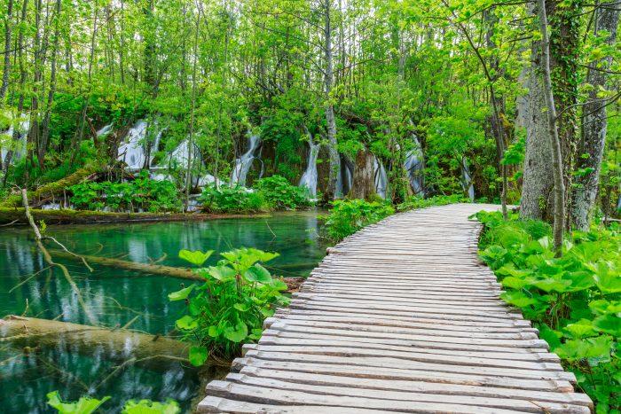 Groene natuur in Nationaal Park Plitvicemeren