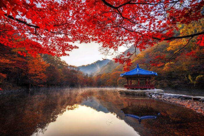 Herfstkleuren in het Naejangsan National Park, Zuid-Korea