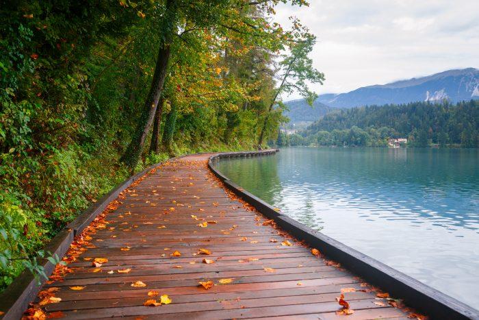 Houten wandelpad rond het Meer van Bled