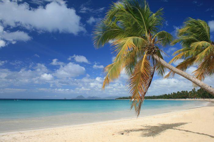 Les Salines strand op Martinique