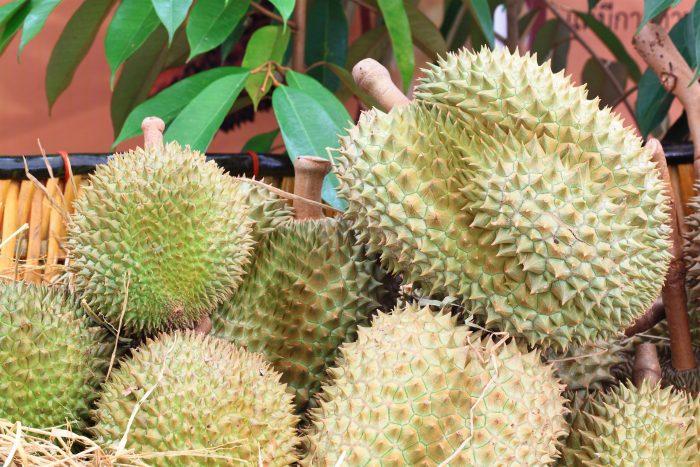 Opgestapelde durians met scherpe punten