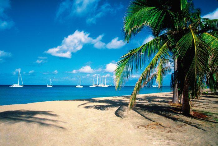 Pinney's Beach op Nevis