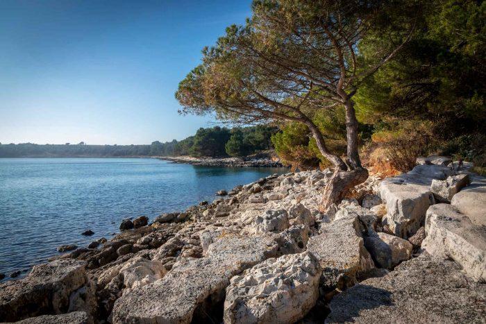 Rotsstrand in Kamenjak in Istrië, Kroatië