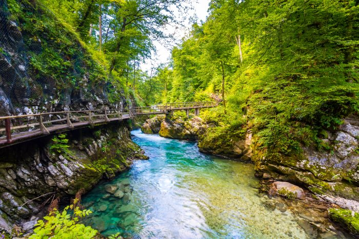 Vintgar kloof met de smaragdgroene Radovna rivier
