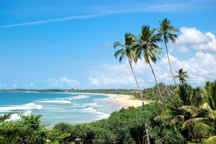 Backpacken Sri Lanka - Wit Strand en Palmbomen