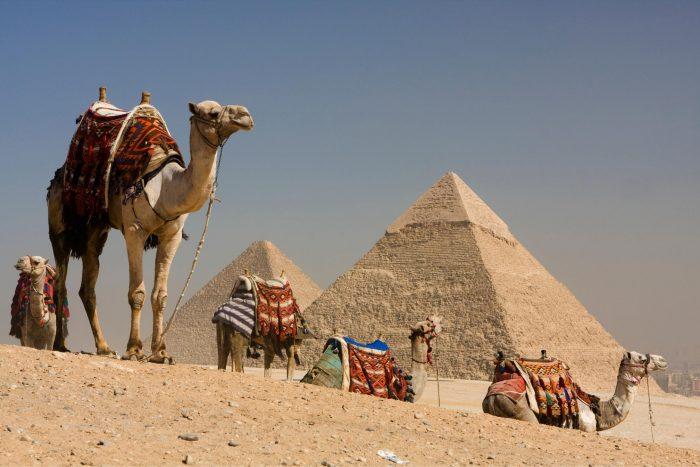 Kamelenrit bij de Piramides van Gizeh