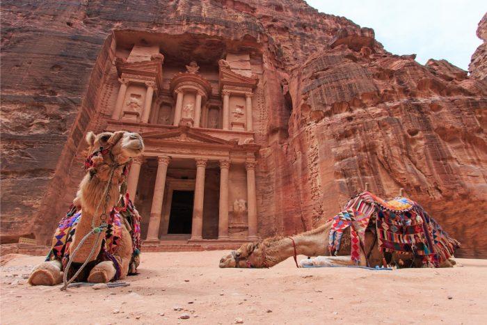 Petra Kamelen