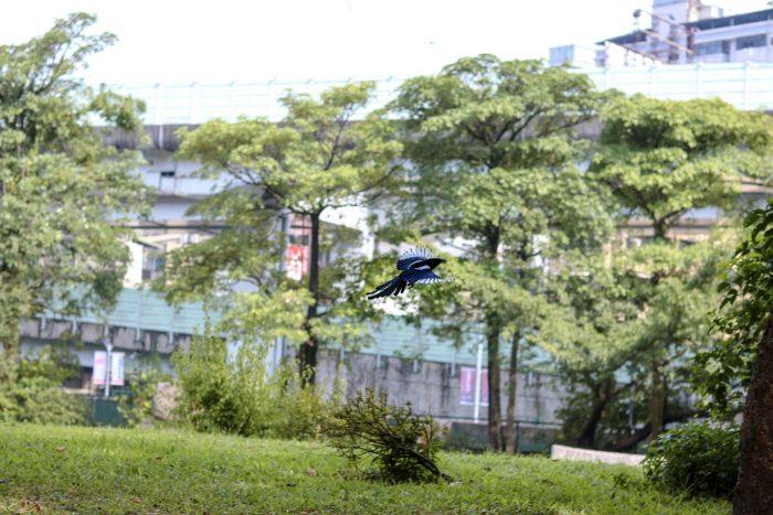 Taipei Bezienswaardigheden
