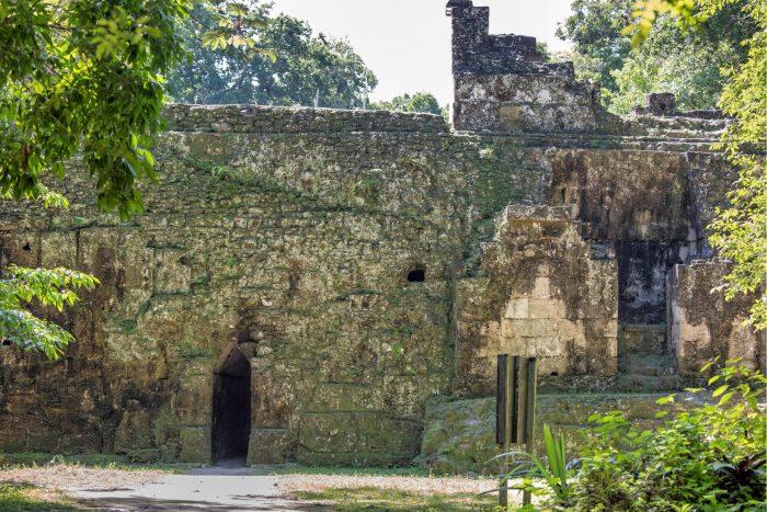 Tikal gang door ruïnes