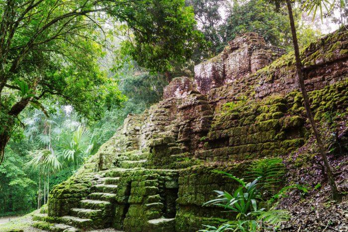 Tikal ruïnes in de jungle
