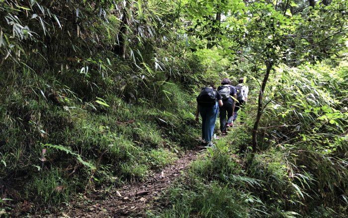 Locals die naar Mount Koyasan lopen