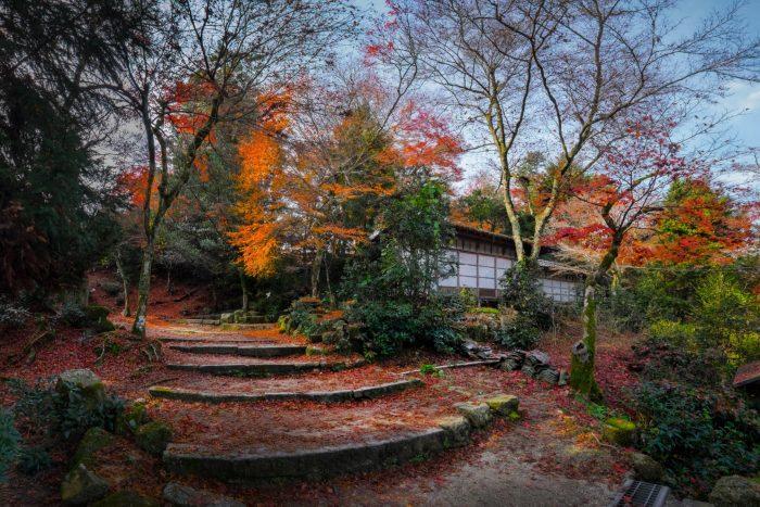 Miyajima pad naar tempel