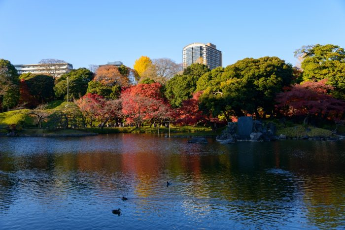 De grote vijver in de Koishikawa Korakuen Tuin