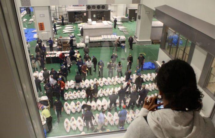 Observatiedek van de tonijnveiling bij de Toyosu Vismarkt