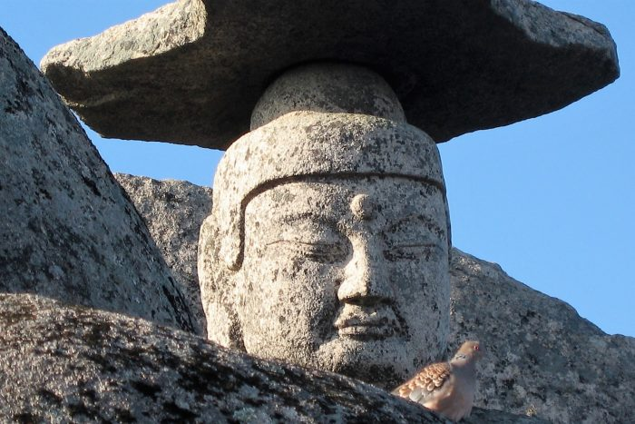 Buddha in Palgongsan Park
