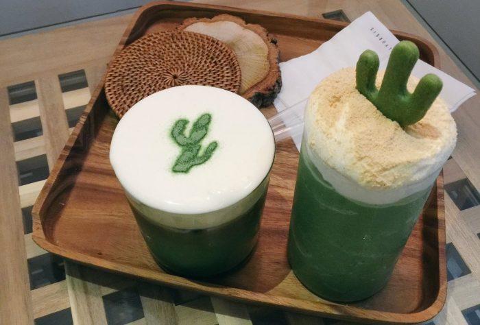Cactus Drankjes in Daily Oasis in Daegu