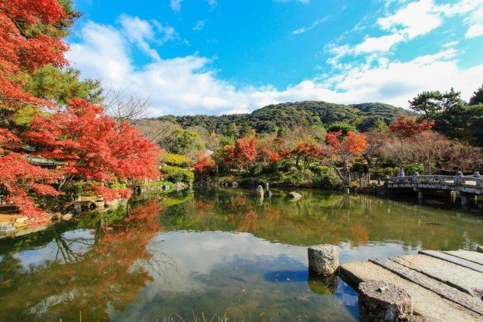 Maruyama Park in de herfst