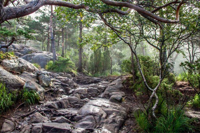Door de natuur hiken naar Preikestolen