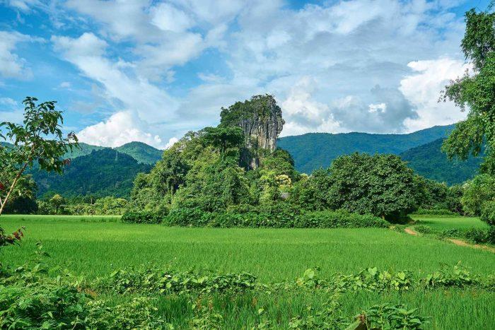 Natuur rond Vientiane
