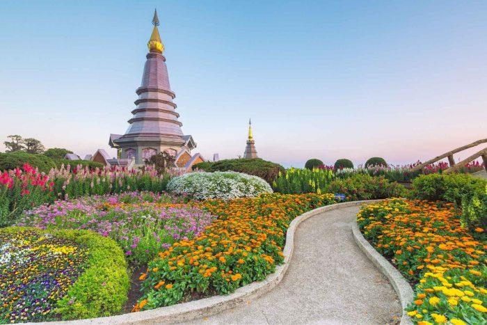 Pad door de bloemen bij een tempel in Chiang Mai