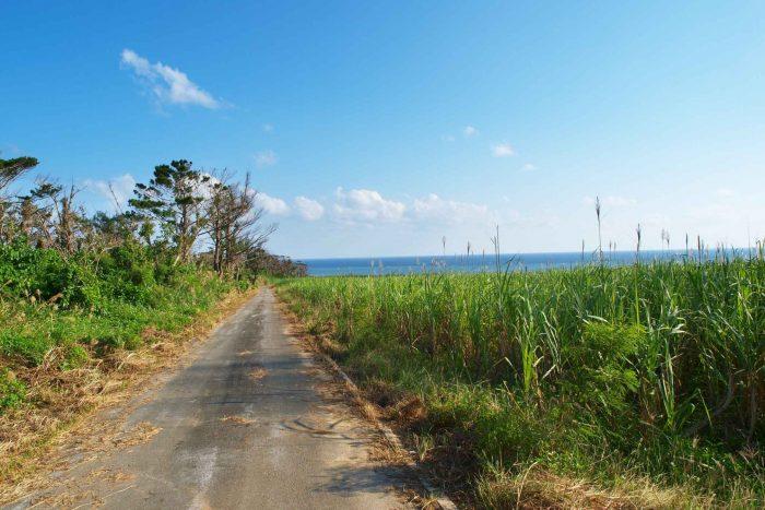 Rustige wegen op Iriomote eiland