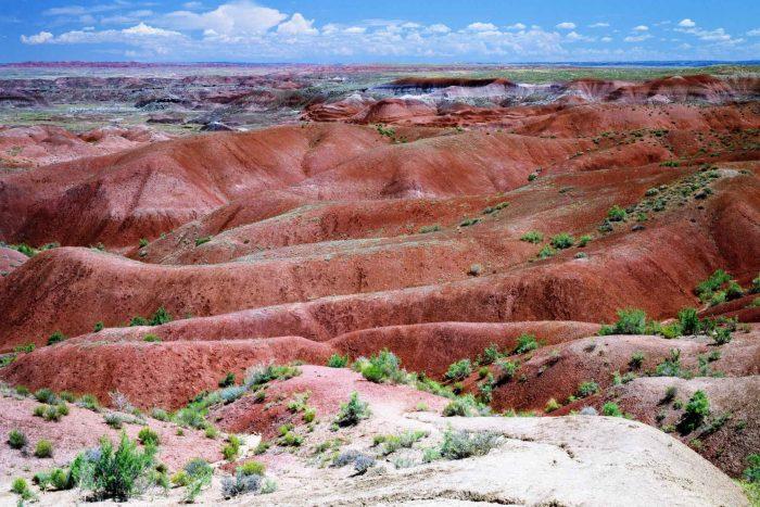 Painted Desert (Geschilderde Woestijn) in Arizona