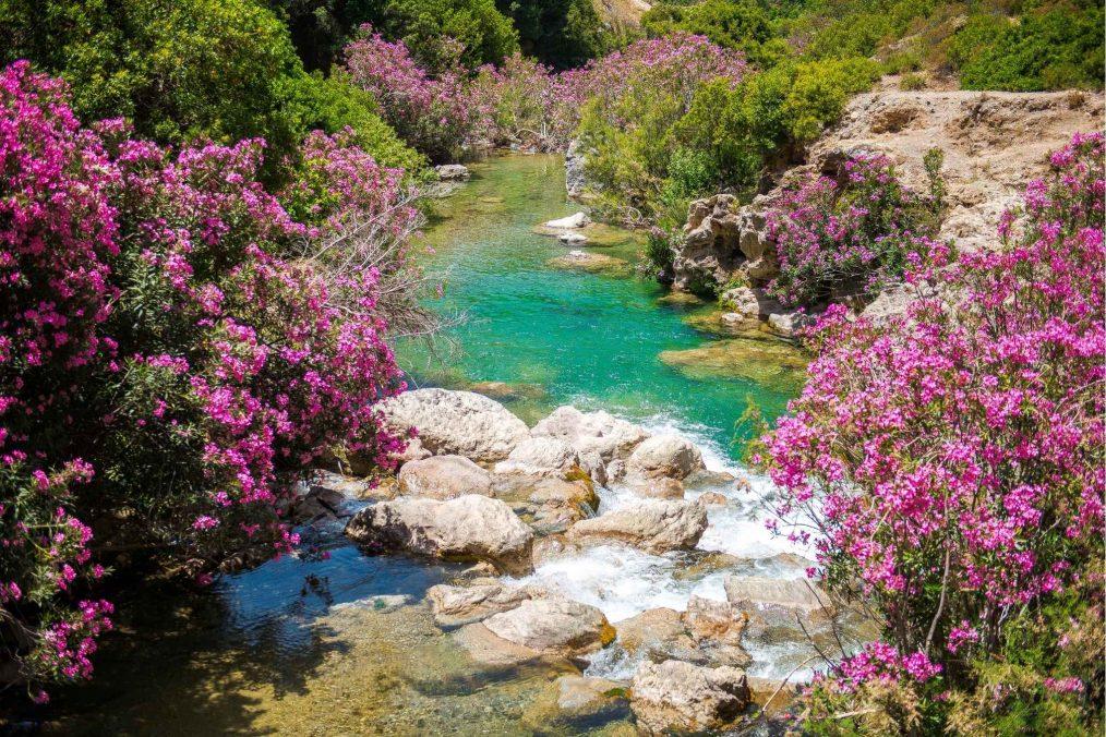 Prachtige gebied van Akchour in Rif gebergte