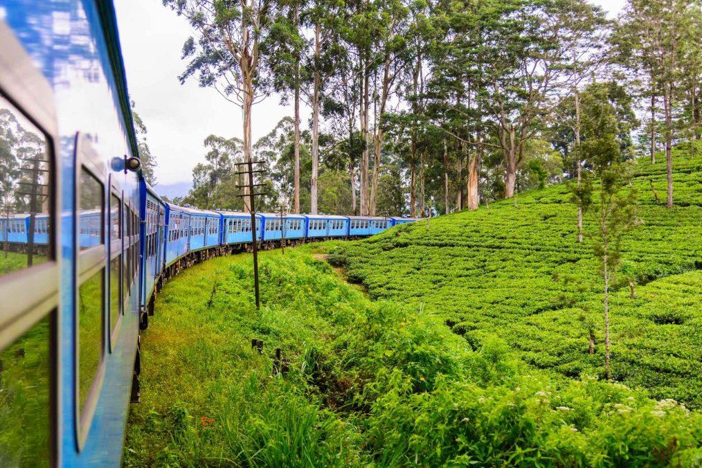 Trein van Kandy Naar Ella (Sri Lanka Reisgids)