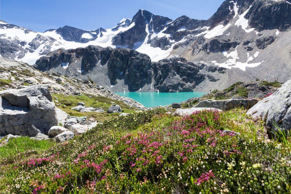 Besneeuwde bergen van Whistler