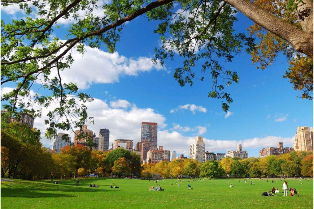 Central Park tussen de gebouwen van New York