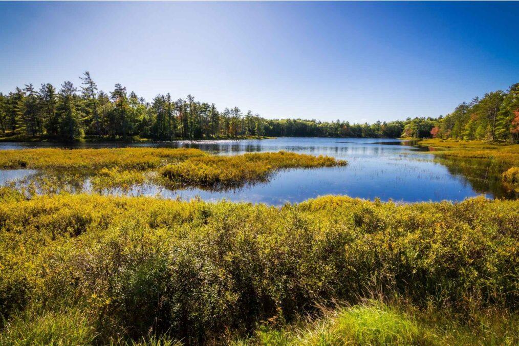 Prachtige natuur in het Upper Peninsula (Michigan)