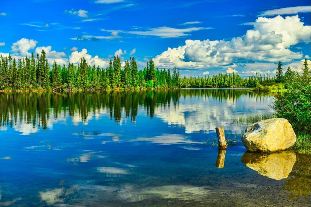 De Tanana rivier in Alaska