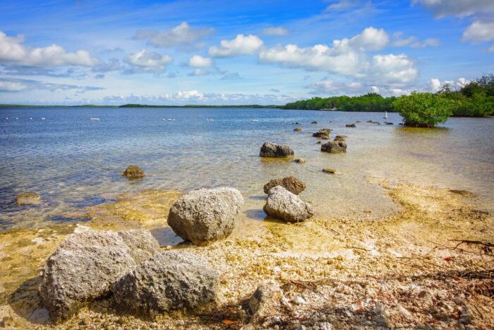 Rotsen aan het water in het John Pennekamp Coral Reef State Park